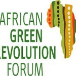 AFRICAN GREEN